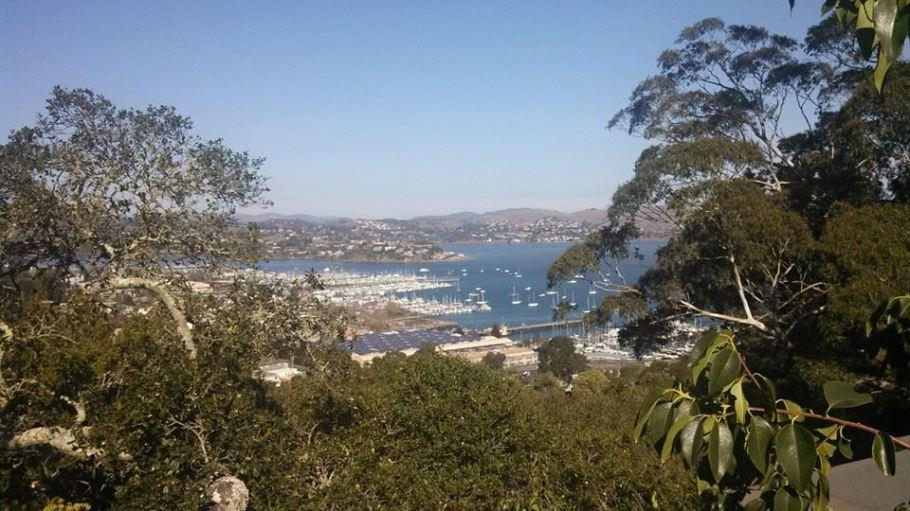 Overlooking Tiburon,CA