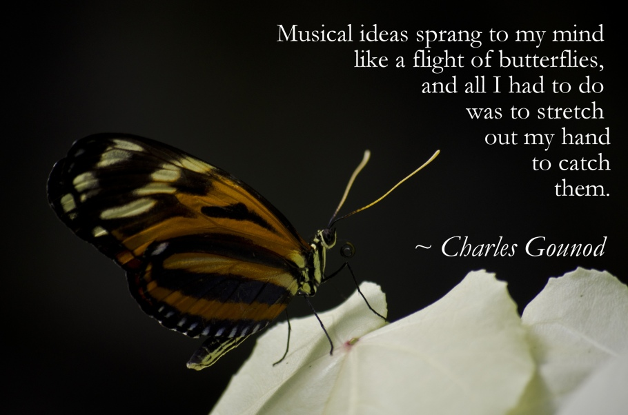 Musical ideas sprang to my mind like a flight of butterflies, and all I had to do was to stretch out my hand to catch them. ~ Charles Gounod Photo Credit Laura Gentner